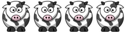 4 Kühe